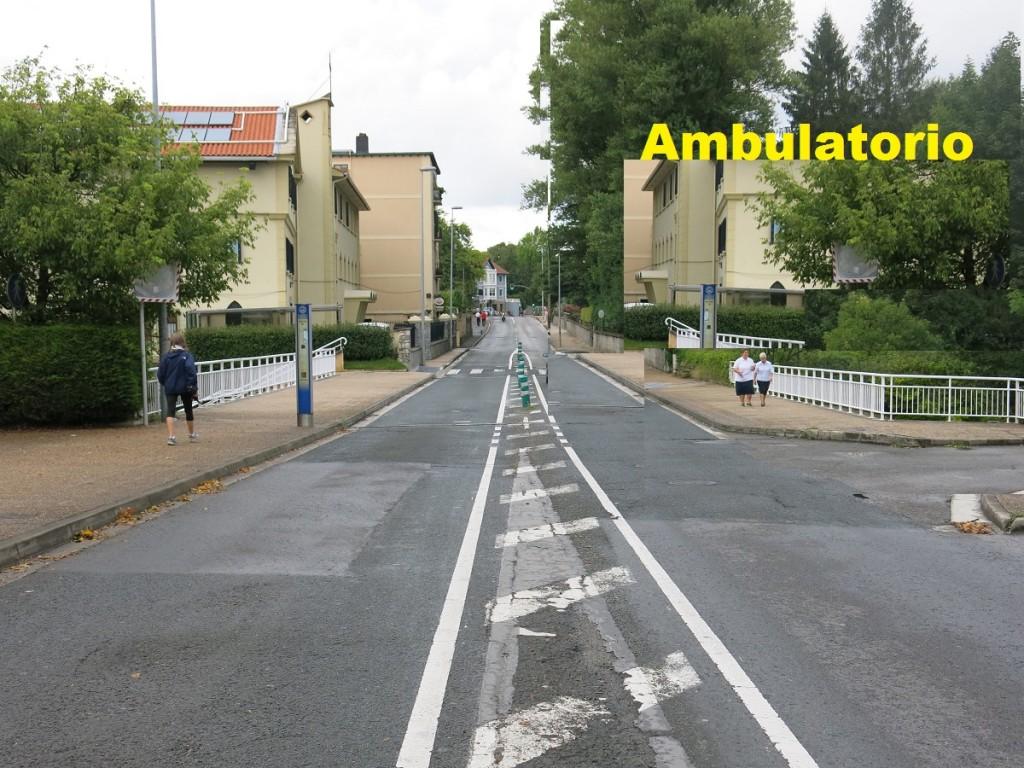 ambula (2)