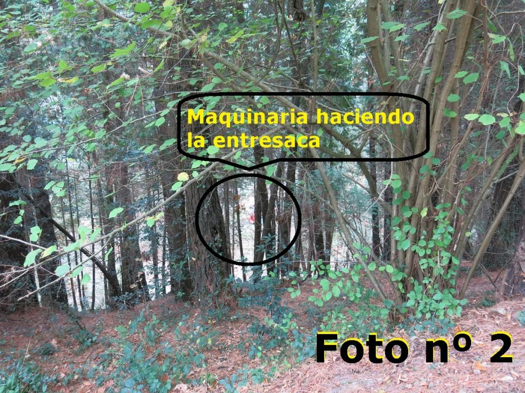 foto nº 2
