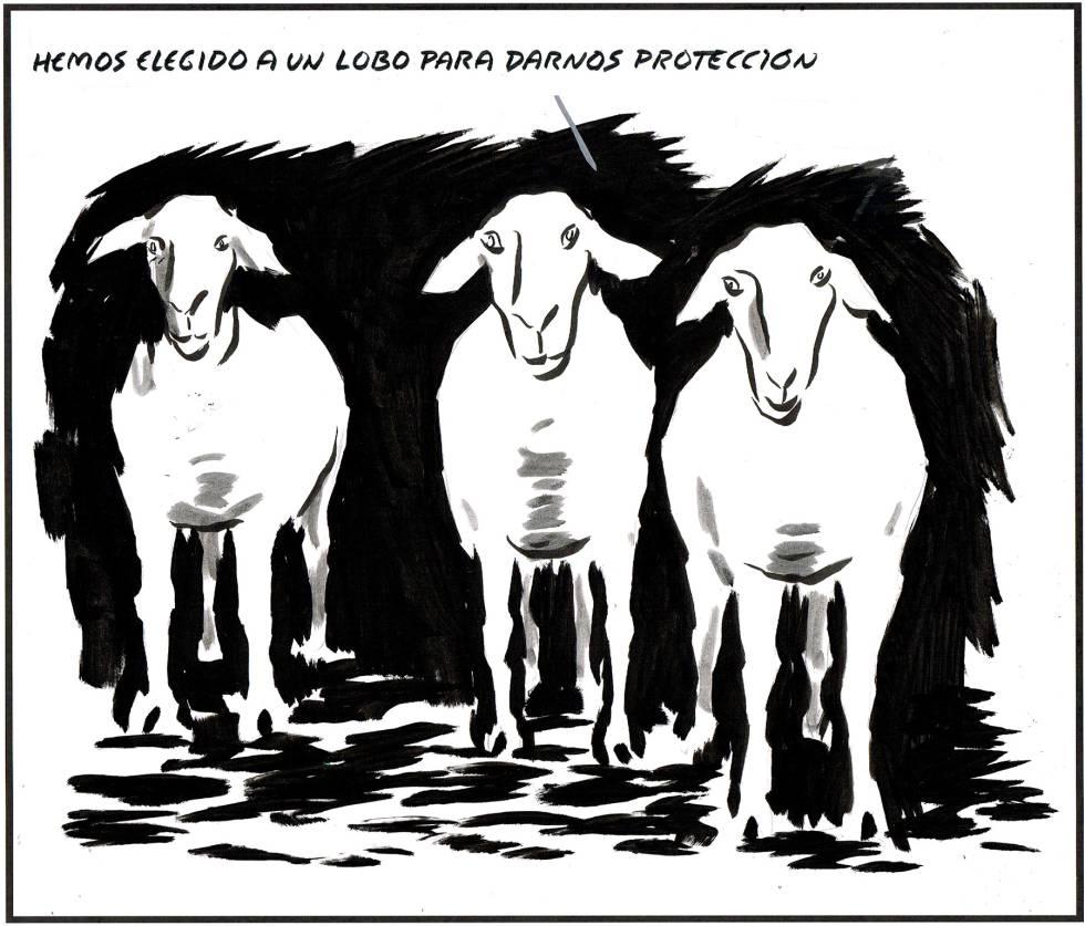 ovejas el roto